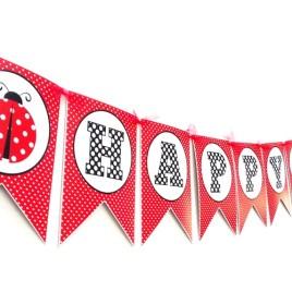 Ladybug Birthday Banner Party Decoration