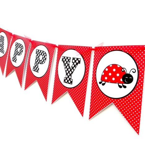 Ladybug Birthday Banner Party Decoration